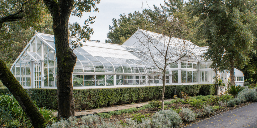 Dat Pham Greenhouse